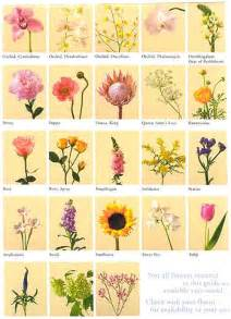 list of flowers with pictures beautiful flowers