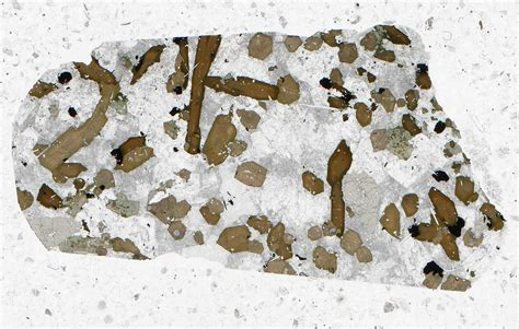 nepheline syenite thin section thin section scans rockptx
