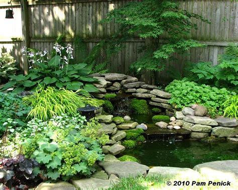 Small Shade Garden Ideas Photograph In Another Garden Down Small Shade Garden Ideas