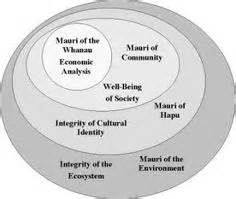 Tottem 4 Mauri maori on koru of maori ethics model rangahau totem maori reflective practice