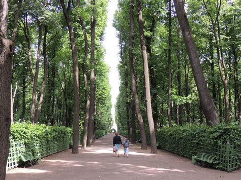 giardino d estate panoramio photo of san pietroburgo giardino d estate