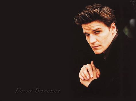 david boreanaz david boreanaz wallpaper 44864 fanpop