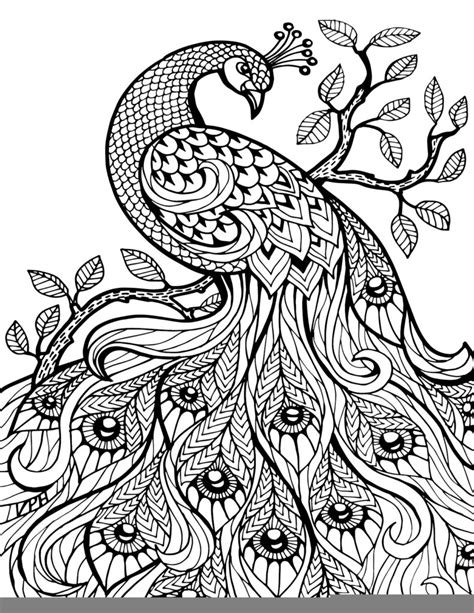 adult coloring pages printable free free printable coloring pages free printable coloring book pages best