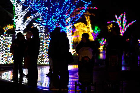 zoo lights 2017 seattle wildlights at woodland park zoo returns am 880 kixi