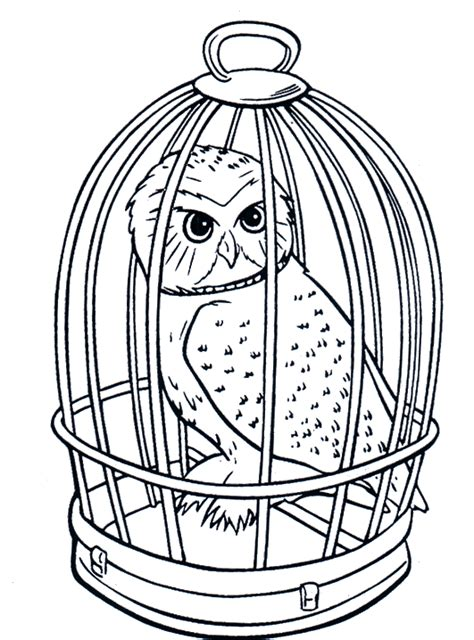 owl mask coloring page free coloring pages of owl mask