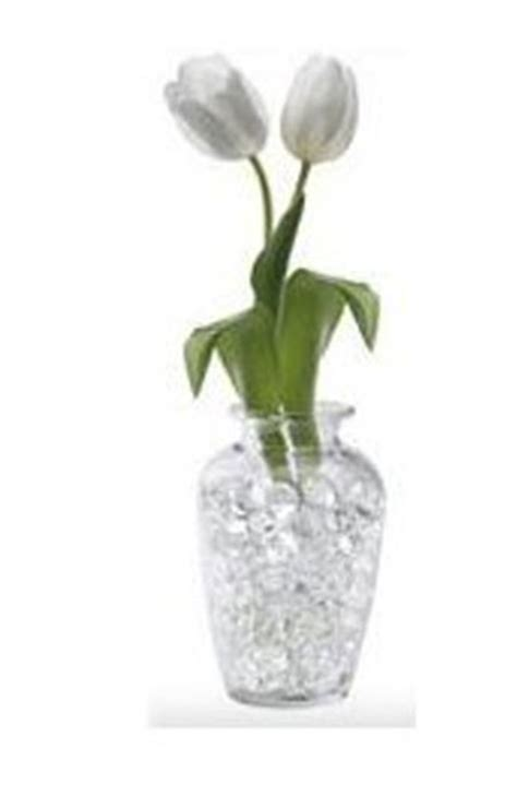 Water Pearls For Vases by Water Ideas And Uses