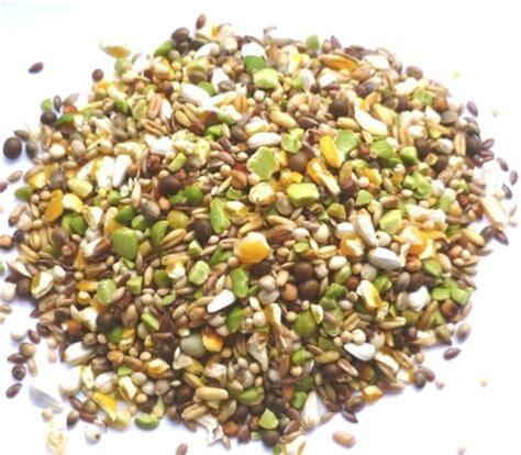 no added wheat bird food food4wildbirds