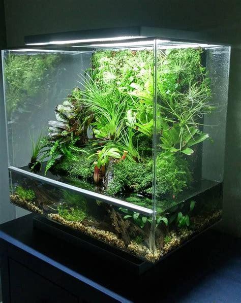 aqua terrarium designs aquascape pin by aqua poolkoh aquarium fish tank aquascape aquascaping