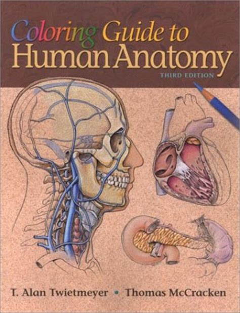 kaplan anatomy coloring book barnes and noble 404 squidoo page not found