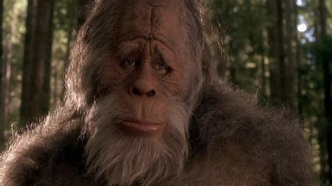 the of bigfoot bigfoot sasquatch yeti and harry and the hendersons