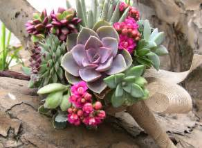 succulent bouquet succulent plant floral designs wedding bouquets