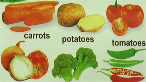 vegetables n fruits name the gallery for gt vegetables names telugu to
