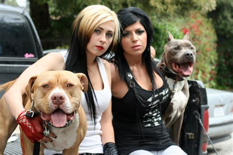 pitbulls and parolees dogs pit bulls and parolees cast breeds picture
