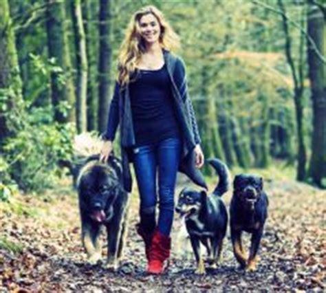 Jo In Clothes For Pets S Intl des chiens de garde pour joss actualit 233 chien