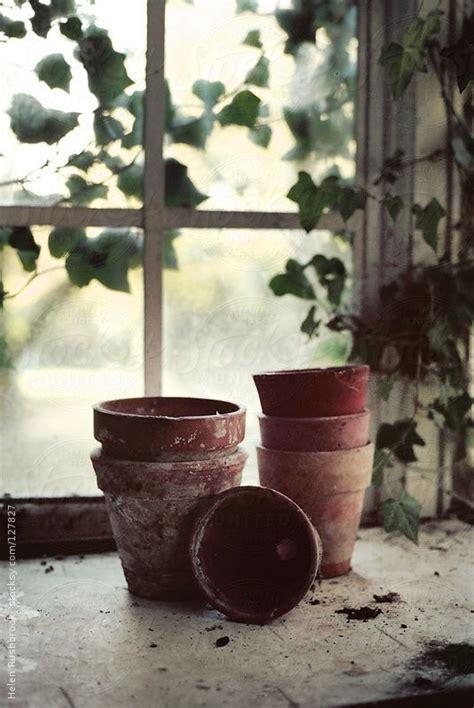 teracotta pots on a potting bench by helenrushbrook