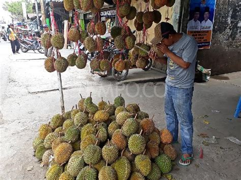 doodle nama fikri kandungan vitamin durian kuning kalimantan turunkan