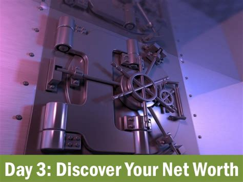 Detox Net Worth by The 30 Day Money Cleanse