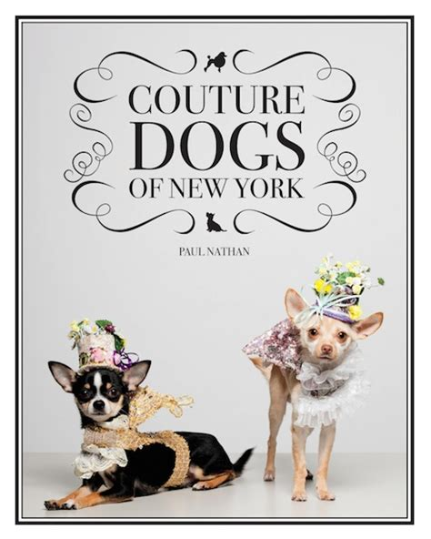 libro dogs perros vestidos el libro couture dogs of new york viste la calle