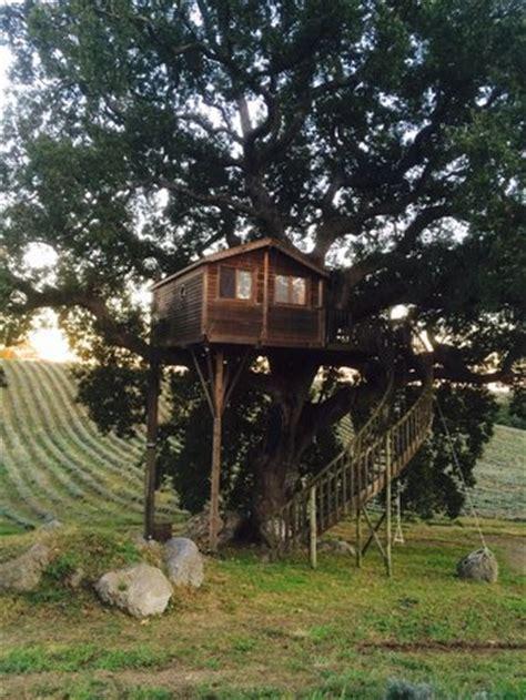 la casa sull albero viterbo la casa foto di agriturismo la piantata arlena di