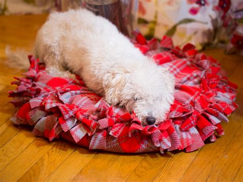 no sew dog bed instructions for a no sew fleece pet bed how tos diy