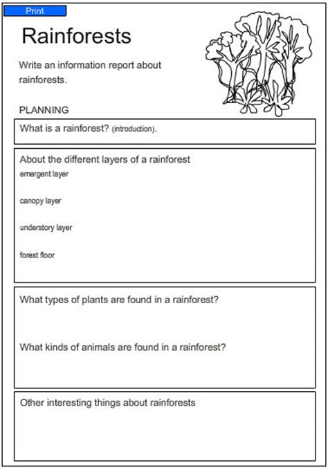 Of The Rainforest Essay by Exle Of A Persuasive Letter Ks2 Rainforest Cover Letter Templates
