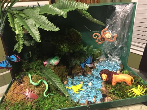 the golden forest exploring a coastal california ecosystem term ecological research books 4th grade rainforest ecosystem shoebox diorama tropical