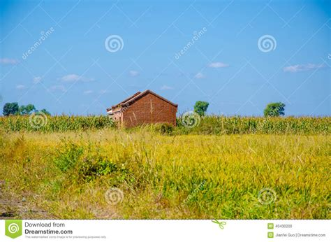 a house in the sky a house in the rice field under blue sky stock photo image 40430200