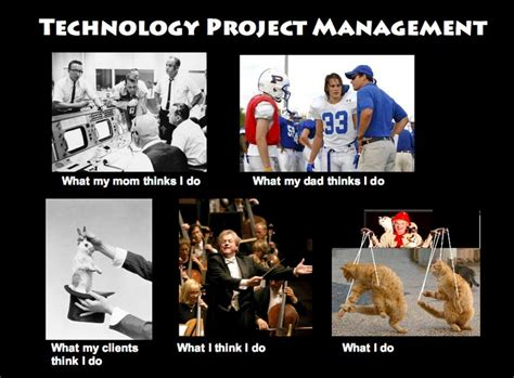 Project Manager Meme - project manager meme 25 best images about job roles meme