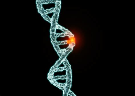 changing faces the consequences of exposure to gene and thyroid disrupting toxins books in depth review the cancer genome atlas reports on