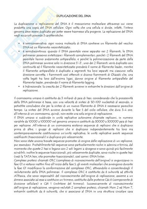 test di biologia molecolare biologia molecolare replicazione dna