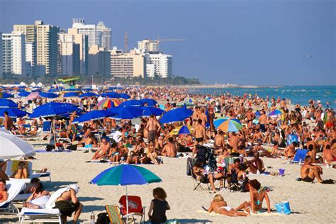 south beach south beach exotic holiday plan best travel sites