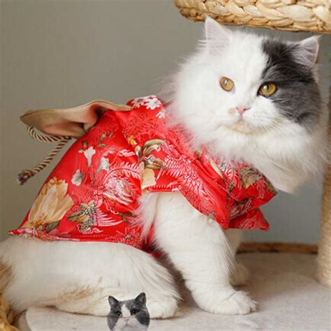 Aliexpress.com : Buy New Japan style Small Cat Clothes
