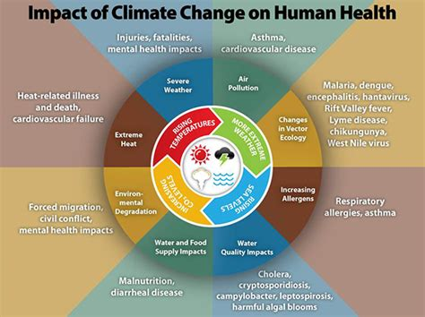imagining the future of climate change world through science fiction and activism american studies now critical histories of the present books cdc climate change and health climate effects
