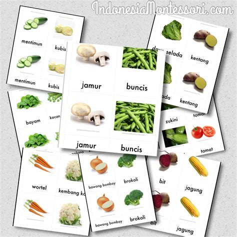 printable montessori indonesia free printable sayur mayur indonesiamontessori com