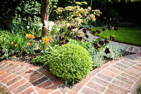 hstead garden design planting design of evergreen structural plants and hedging in filled