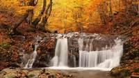Autumn HD Wallpapers For Desktop  Pop