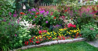 flowers annuals perennials in raleigh nc norwood road