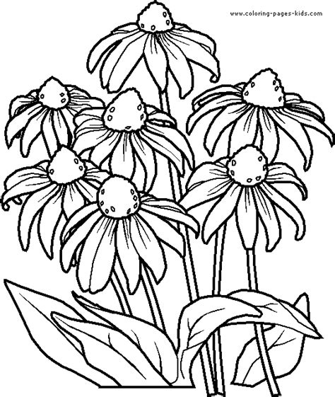 Printable Flower Coloring Pages Flower Coloring Page Flower Coloring Pages Free
