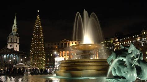 christmas tree at trafalgar square no 235 l visitlondon com