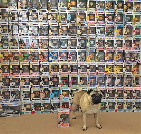 funko pop pug overview for rmburd