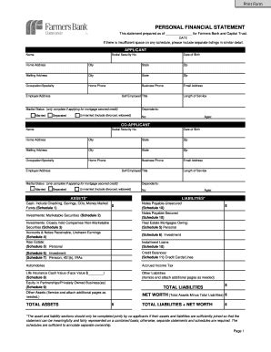 Fillable Generic Personal Financial Statement Forms And Templates Fillable Printable Sles Fillable Personal Financial Statement Template