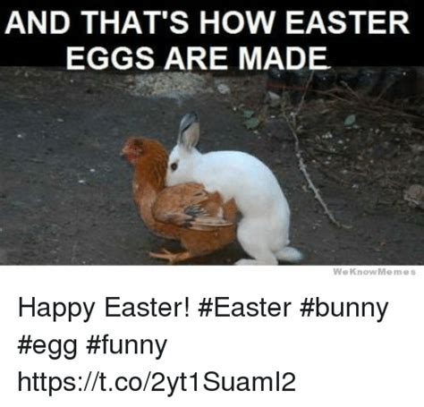Hilarious Easter Memes - and that s how easter eggs are made we know memes happy