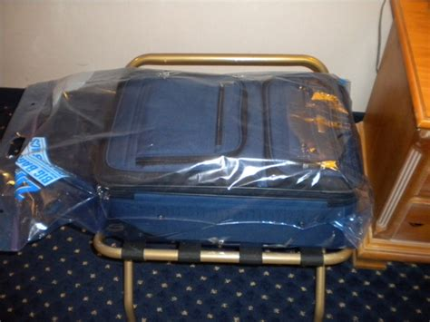 bed bugs travel on clothing bedbugs in hotels