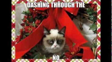 Grumpy Cat Christmas Memes - grumpy cat meme dog memes