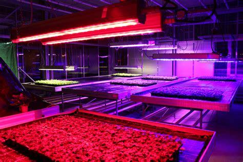 led licht led forschungsprojekt licht einfluss aufs