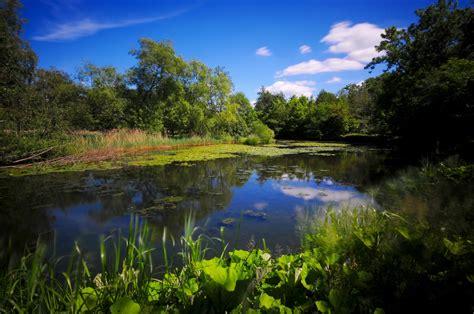 hängesessel natur jm natur landskabs billeder 2011