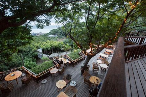 Monkey Valley Cottages by Restaurant Monkey Valley Resort