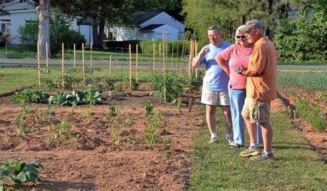 Starting A Community Garden by Starting Community Garden Workshop Tuesday Oct 11 Fauquier Now News