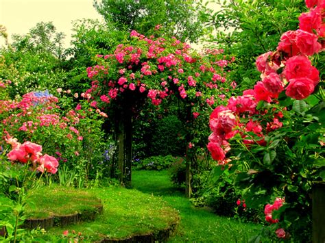 1 Nice Flowers Garden Wallpapers Cokolwiekap Garden Of Flowers