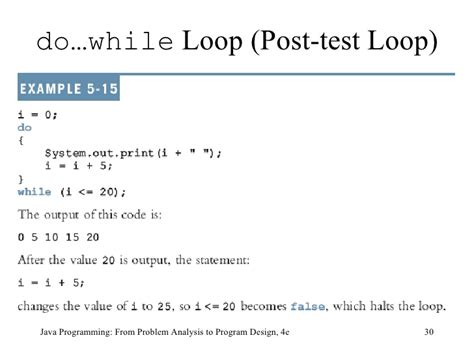 pattern program in java using while loop 9781439035665 ppt ch05